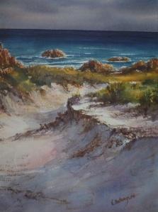 Tarkine Coast Dune Walk
