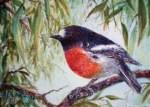 Watercolour: garden birds