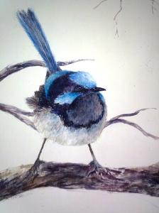wren watercolour 2012