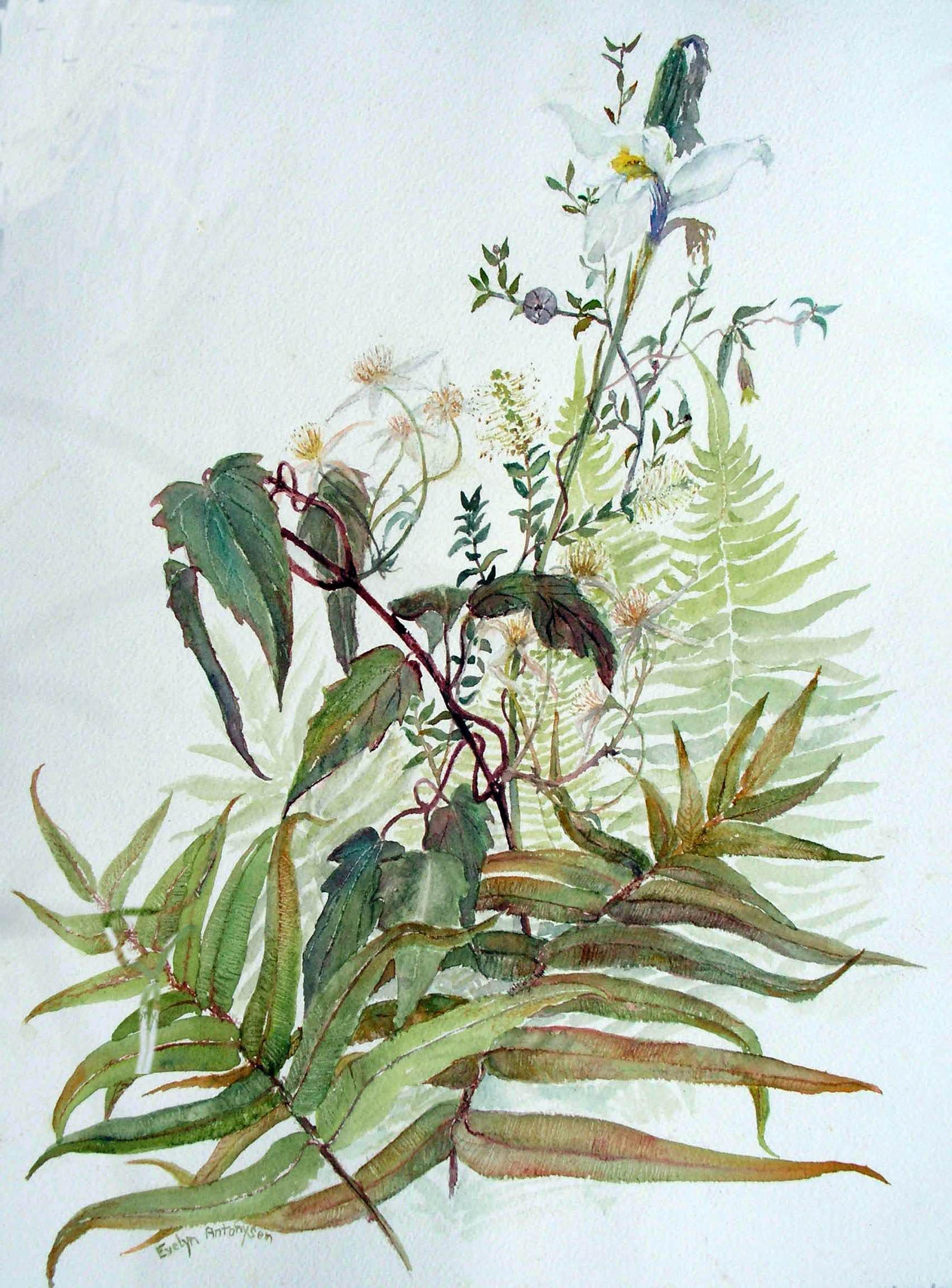 Botanical Art « EvAntArt