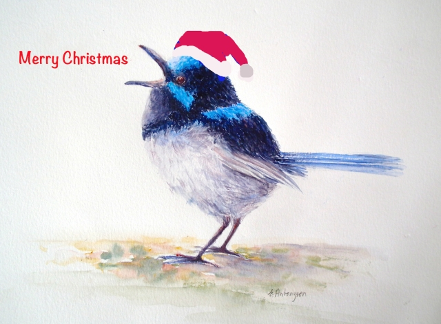 blue wren Christmas 2