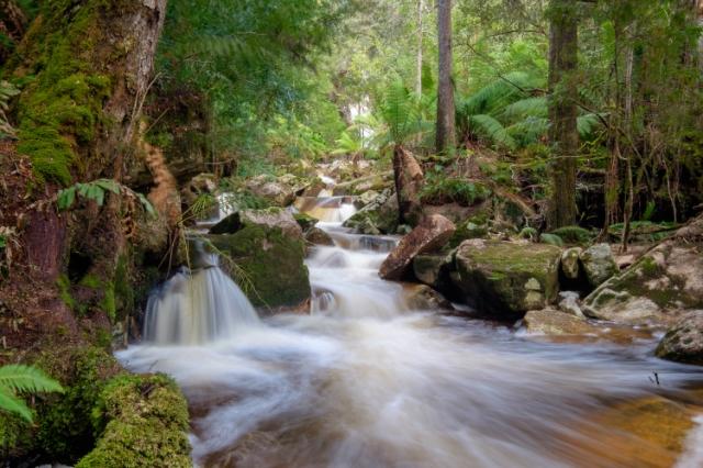 remote-area-ne-tasmania